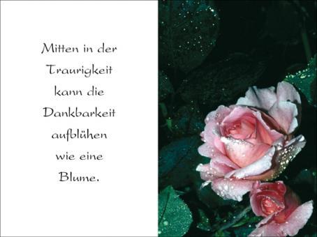 112 Sterbebild Blume der Trauer
