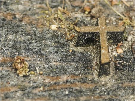 1027 Sterbebild Kreuz im Grau-Gold Schimmer