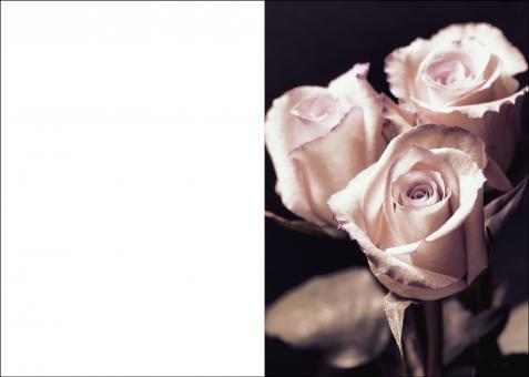 200112 Trauerkarte 4-seitig DIN A 5 Hoch, ohne Kuvert