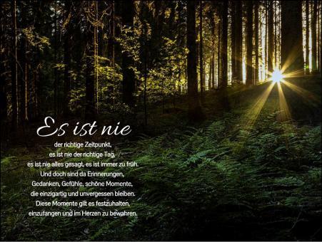 288 Sterbebild Waldlichtung