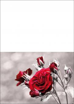 1743 Trauerkarte 4-seitig DIN A 6 nach oben, ohne Kuvert